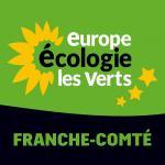 Europe Ecologie Les verts (politique)