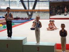Championnat départemental individuel de Saône-et-Loire (Gym)