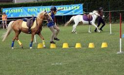 Cluny - Equivallée accueille la coupe d'Europe des clubs de Pony Games